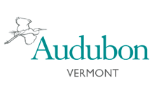 Audubon Vermont logo: Nonprofit clients Marketing Partners