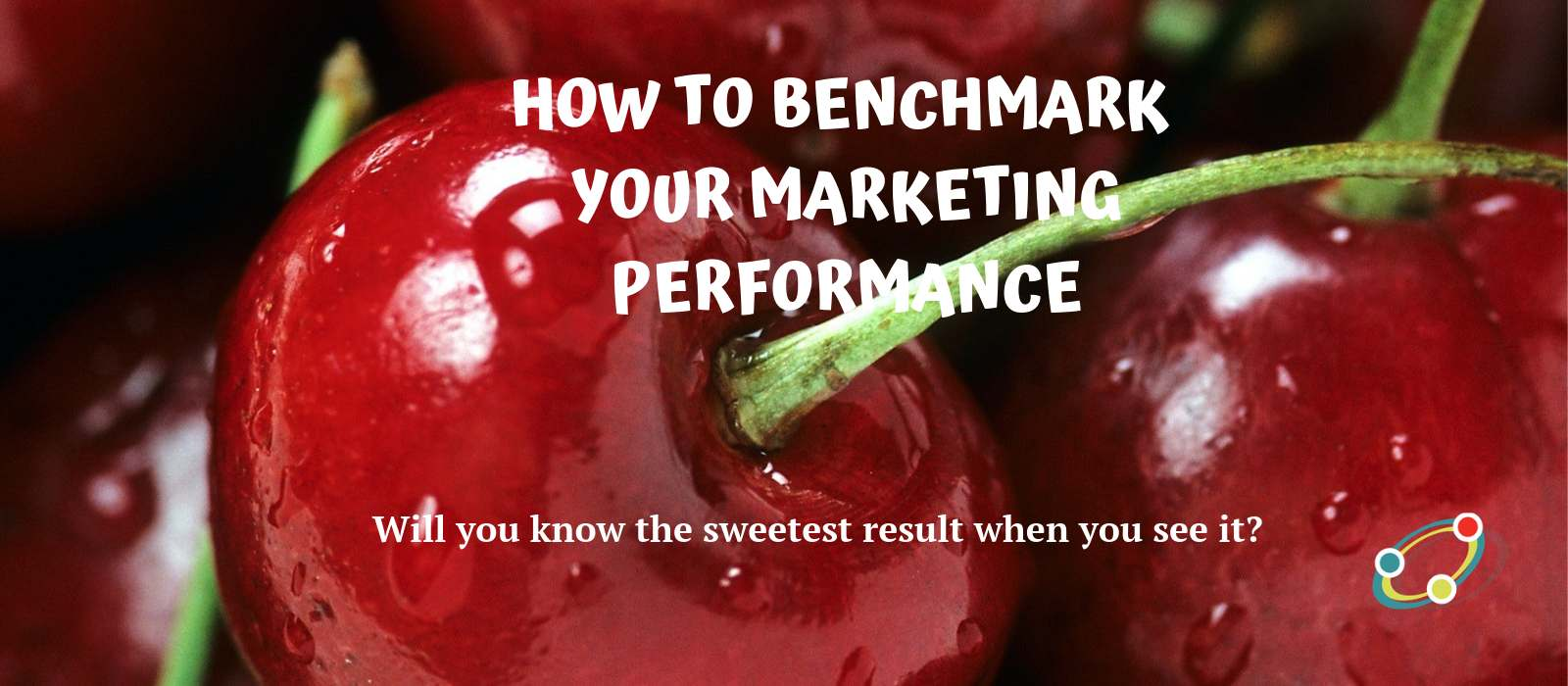 How-to-Benchmark-Your-Performance_close-up image of cherries