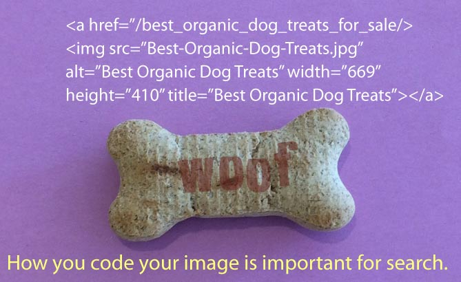 best-organic-dog-treat.jpg