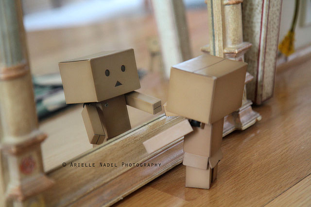 Whats-In-It-For-Me image of Danbo looking at itself in a mirror