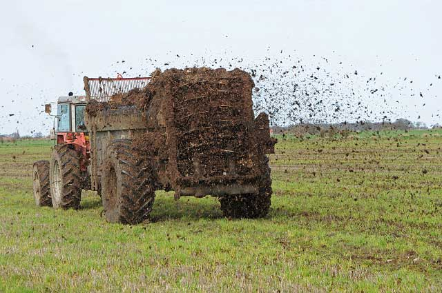 spreading farm manure: representing a Reluctant Marketer_flickr
