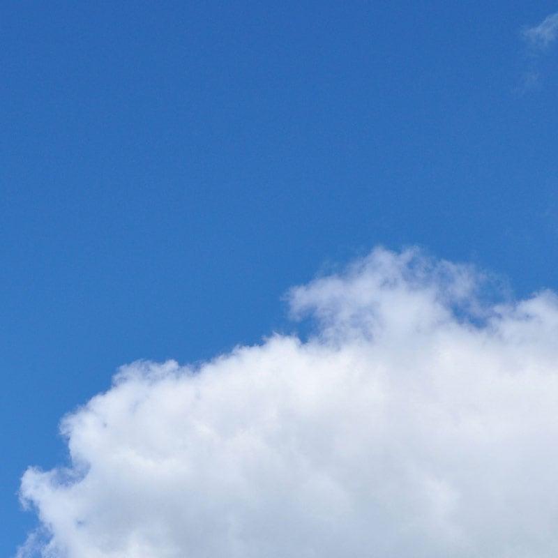 AADMM_banner_blue-sky_800x800