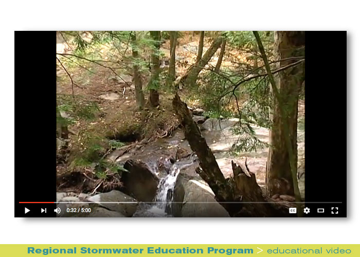 Broadcast: Regional Stormwater Education Program, After the Storm